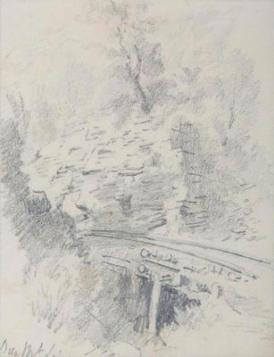 Dun Mountain Line