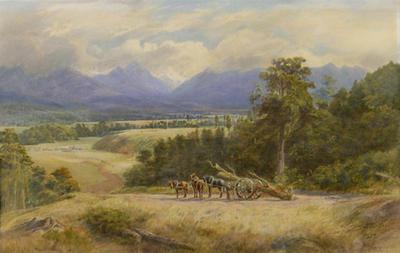 Wangapeka Valley