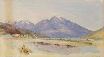 Swyncombe Kaikoura