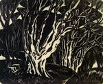 Untitled (test proof for 'Beech Trees at Castlewellan, Ireland')